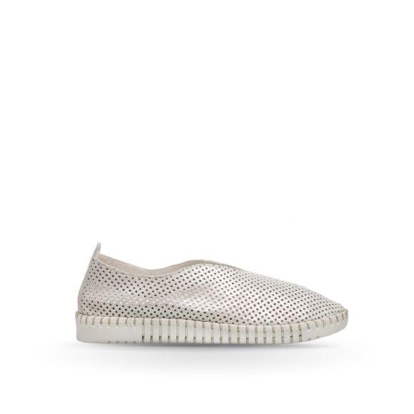 Pantofi Piele PE0032