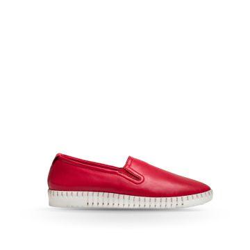 Pantofi Piele PE0039