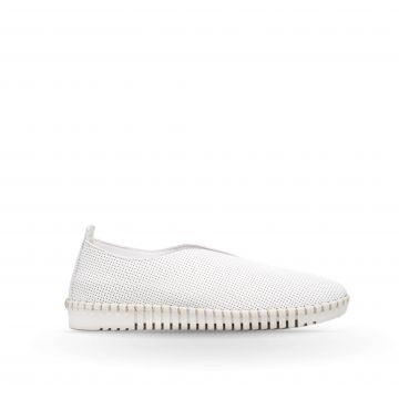 Pantofi Piele PE0085